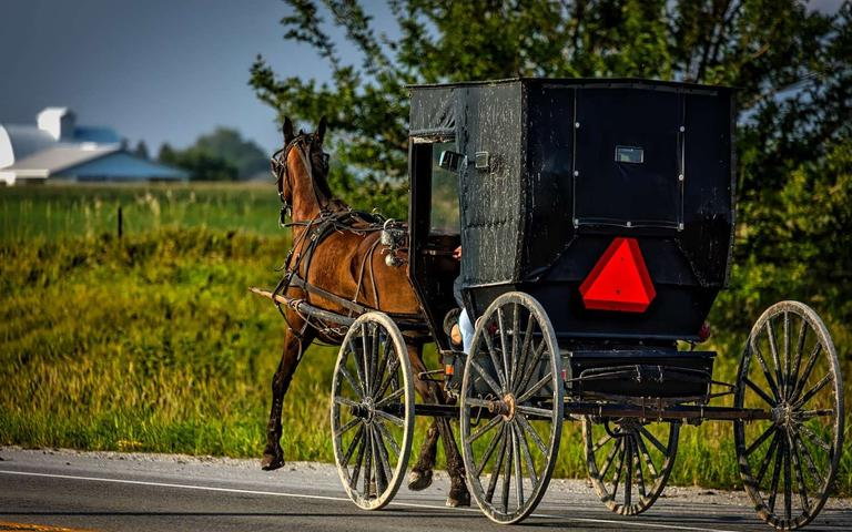 The%20Amish%20Community%20And%20Coronavirus%u2014What%20Can%20We%20Learn%3F